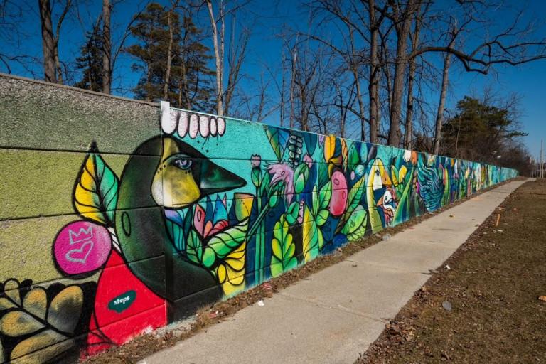 Colourful mural of bird faces