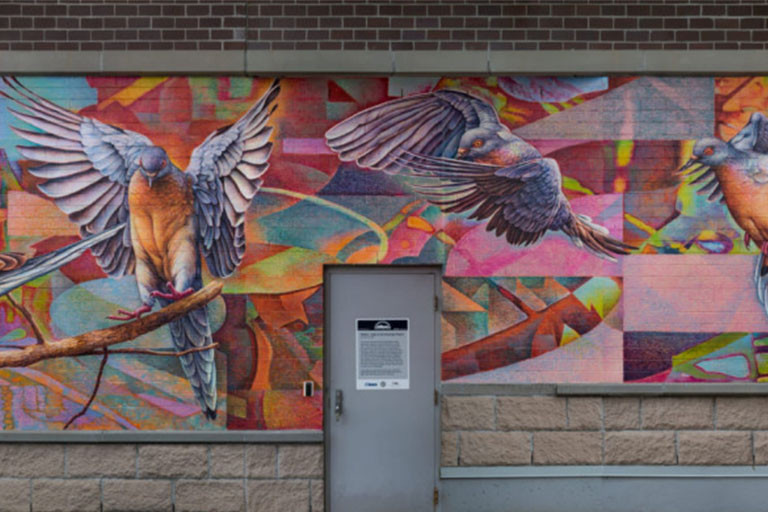 Colourful mural of pigeons
