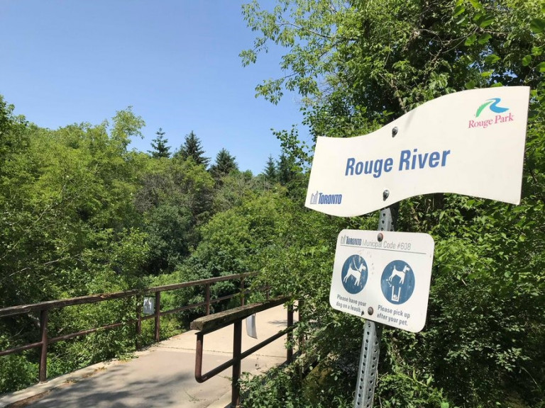Sign reading Rouge River in front of a trail surrounded by trees